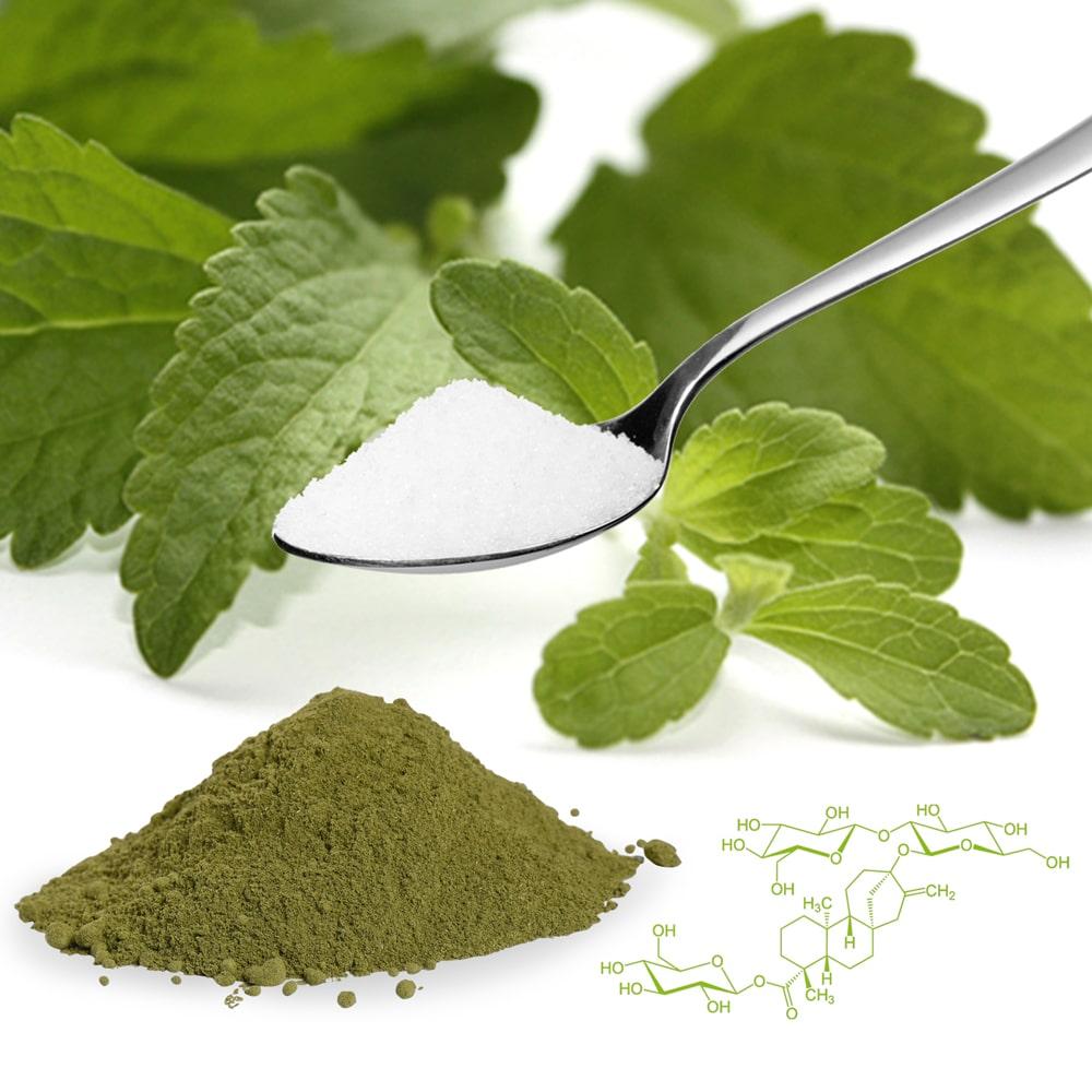 Die Zulassung von Stevia Extrakt – Steviolglykosiden in der EU.