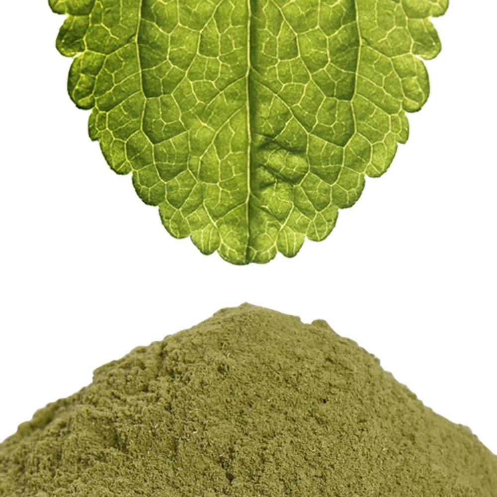 Stevia Blatt und grünes Stevia Blatt Pulver gemahlen