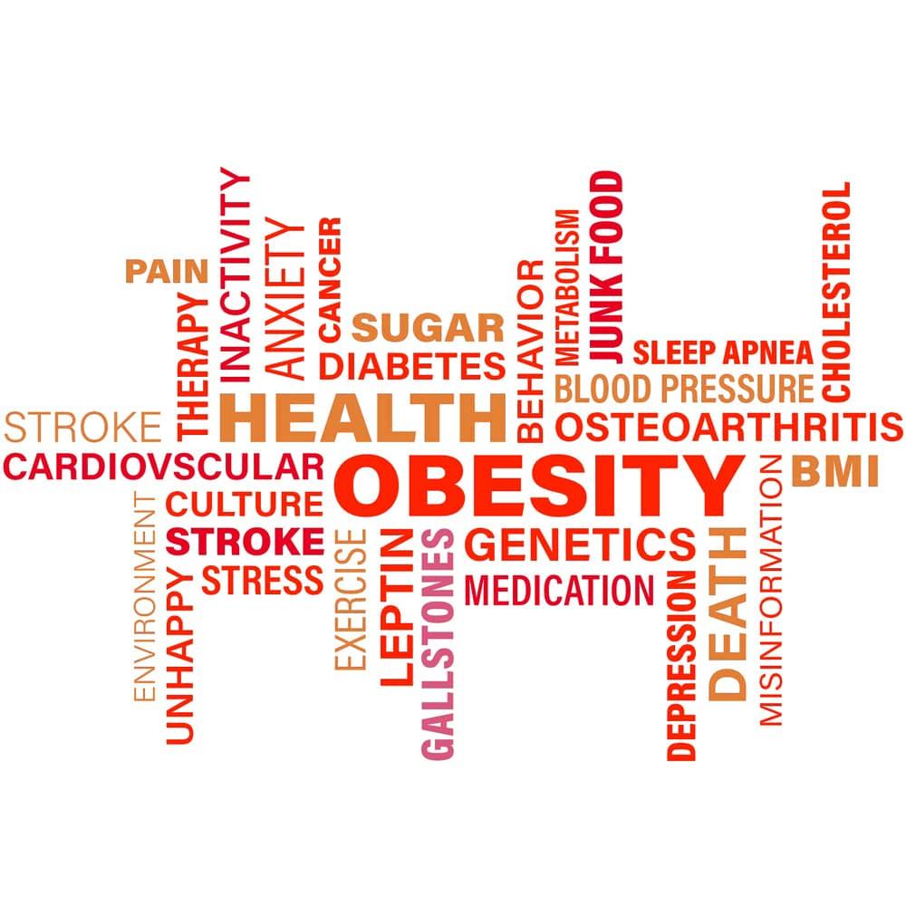 Übergewicht Adipositas Obesity Fettleibigkeit